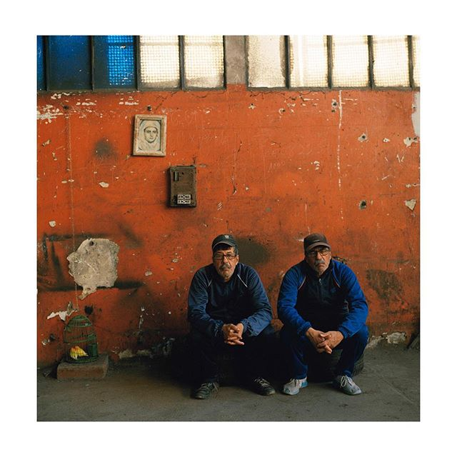 Lahcen et Houssin  Les inséparables 2019  #photography #moyenformat #portra400 #film #hasselblad500cm #lesinseparables #twins #birds #galeriedarelbacha #marrakech #154artfair
