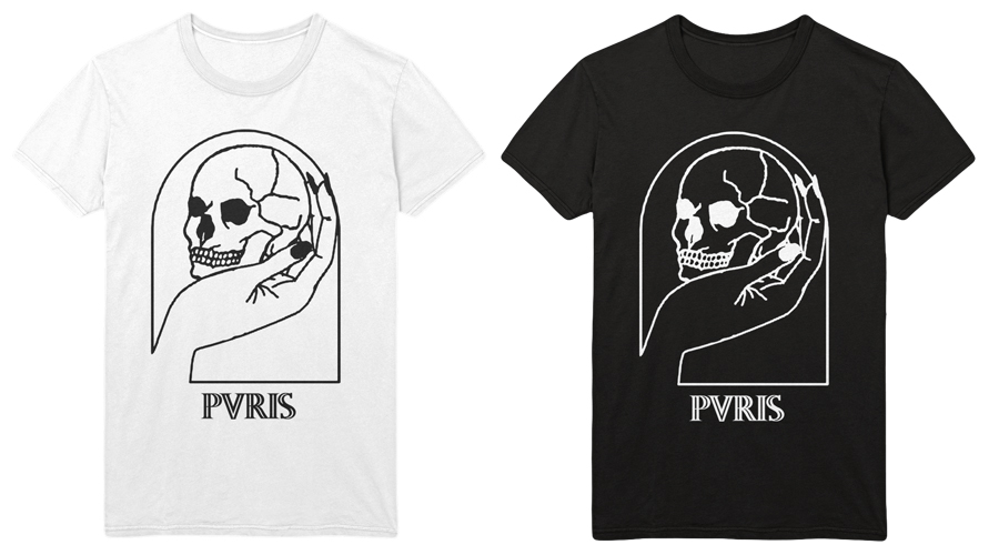 pvris_collector_mock.jpg