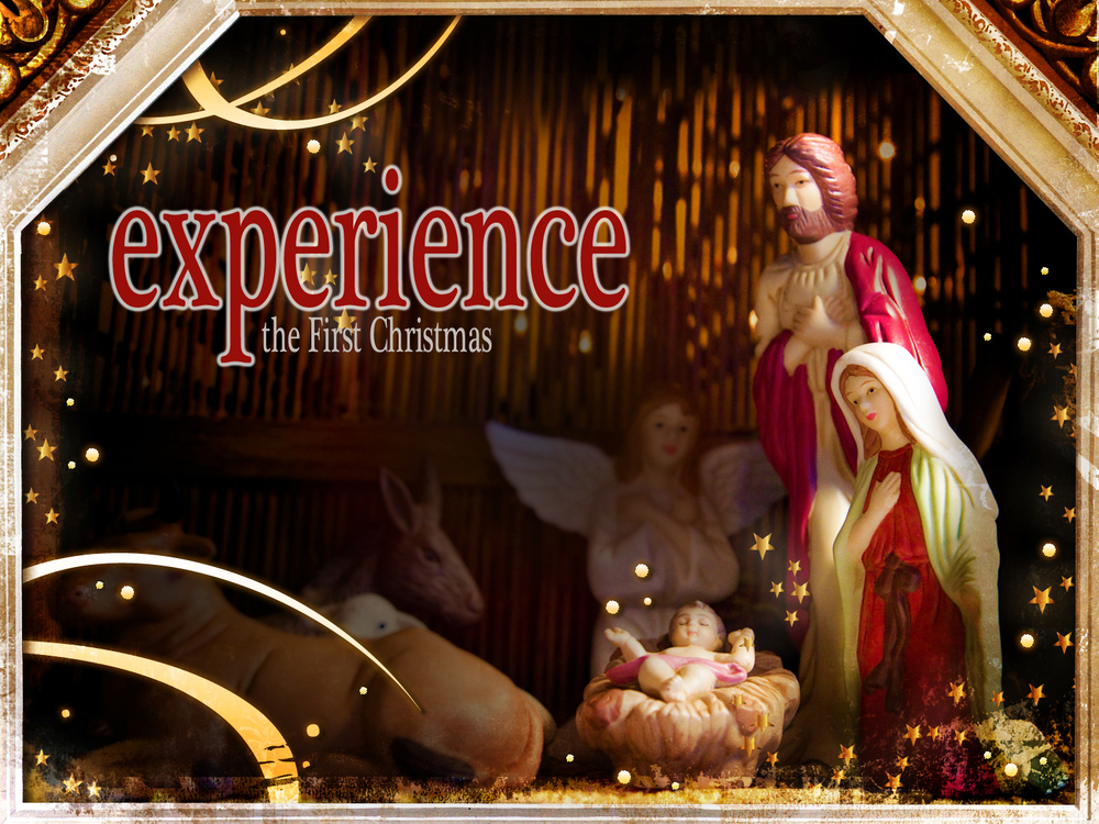 experience banner big.jpg