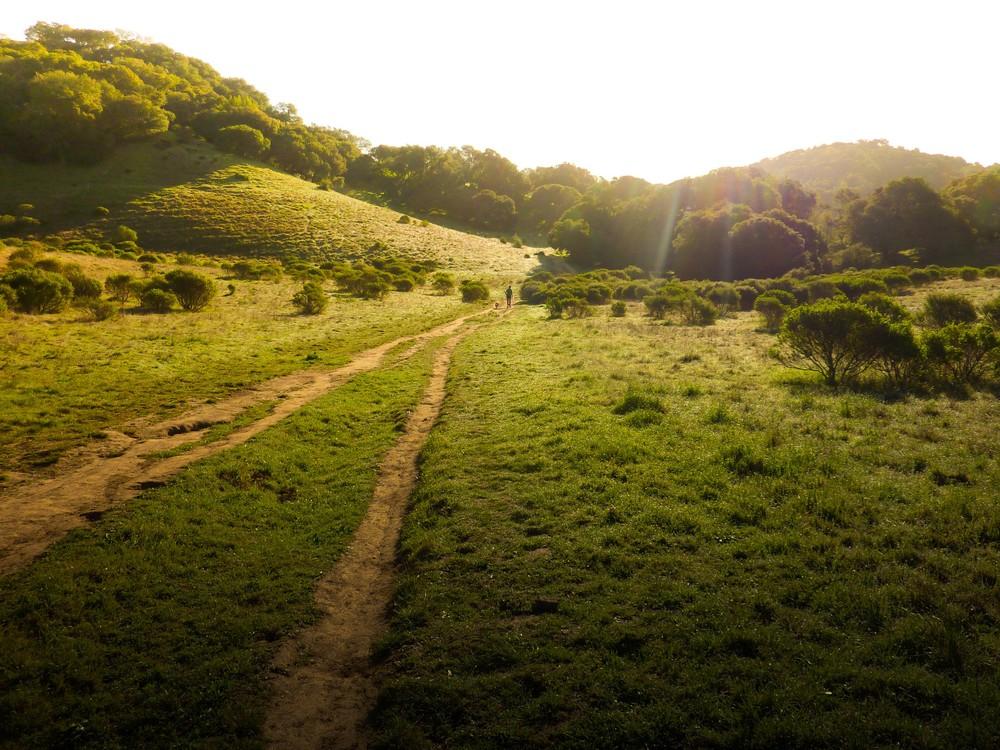 Quiet Paths Religious Stock Image.jpg