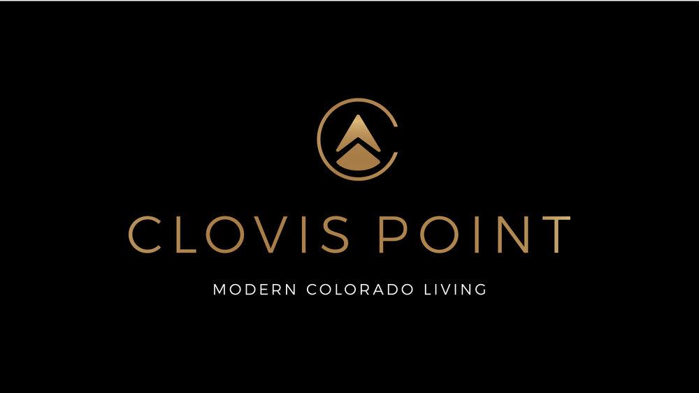 Clovis Point 18.jpg