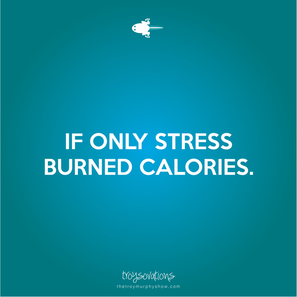 ttmsstatsq_stress.jpg
