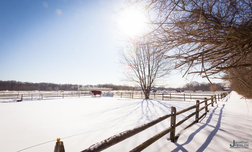 Caumsett Snowshoeing _  Jonathan Heisler  _  3-7-2015_003.jpg