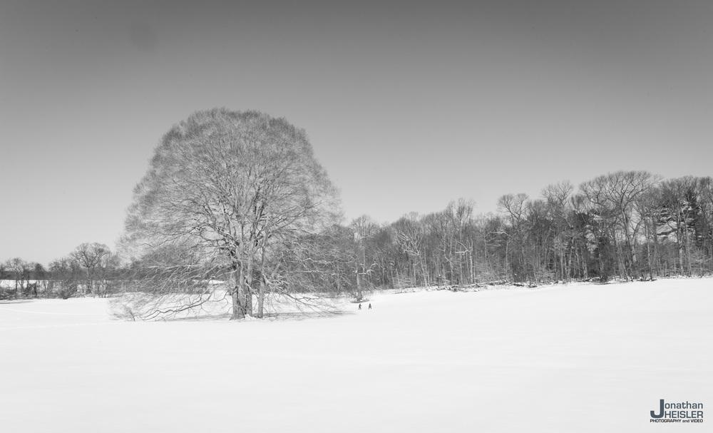 Caumsett Snowshoeing _  Jonathan Heisler  _  3-7-2015_006.jpg