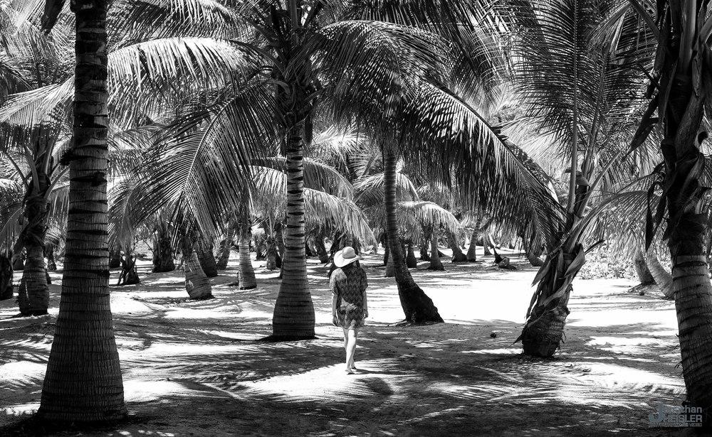 Punta Cana Dominican Republic _  Jonathan Heisler  _  3-24-2015_011.jpg