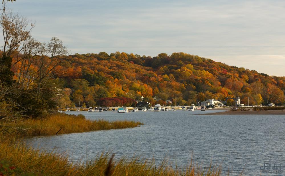 Cold Spring Harbor Fall Foliage