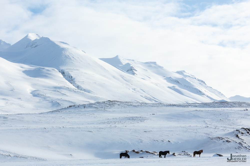 Iceland Winter Photos_  Jonathan Heisler __  02292016 _ 049.jpg
