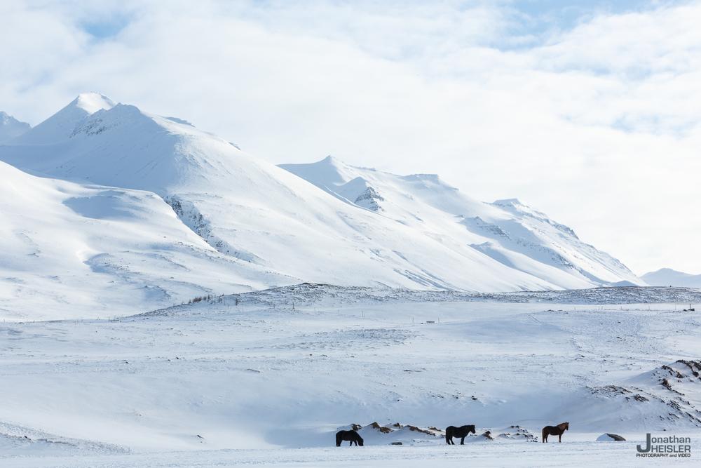 Iceland Winter Photos_  Jonathan Heisler __  02292016 _ 049.jpg