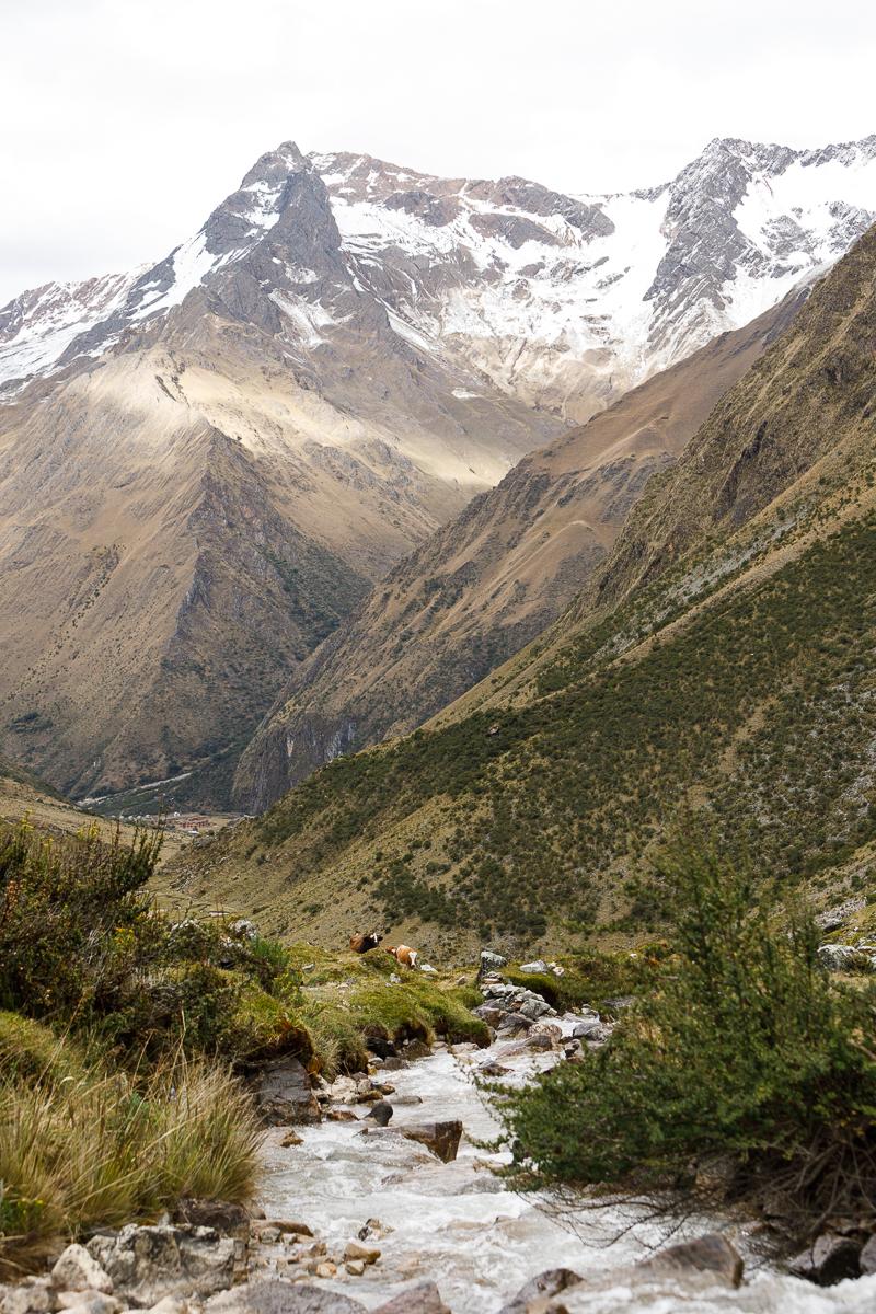Peru _  Jonathan Heisler  _   5.15.2018 _ 0481.jpg