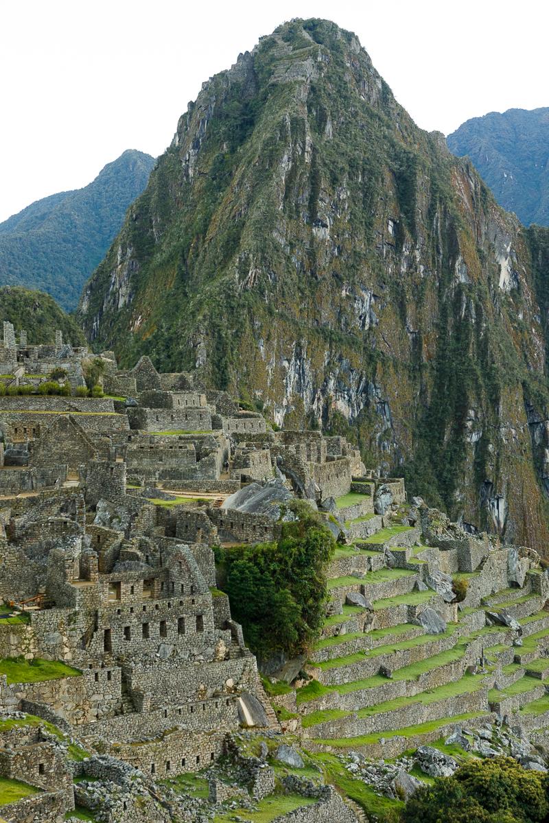 Peru _  Jonathan Heisler  _   5.15.2018 _ 0836.jpg