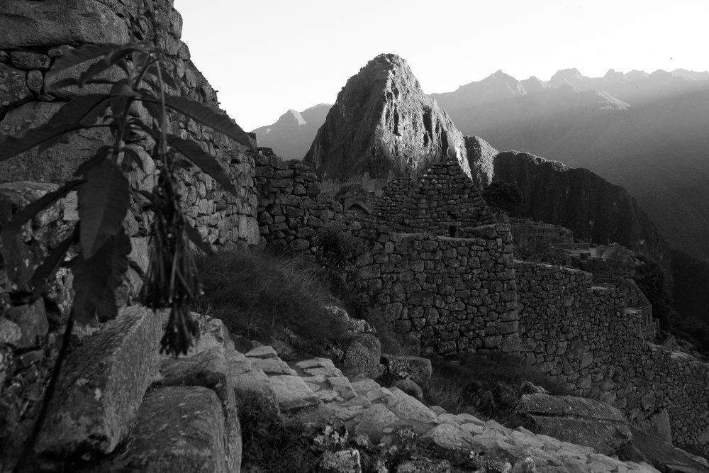 Peru _  Jonathan Heisler  _   5.15.2018 _ 0865.jpg