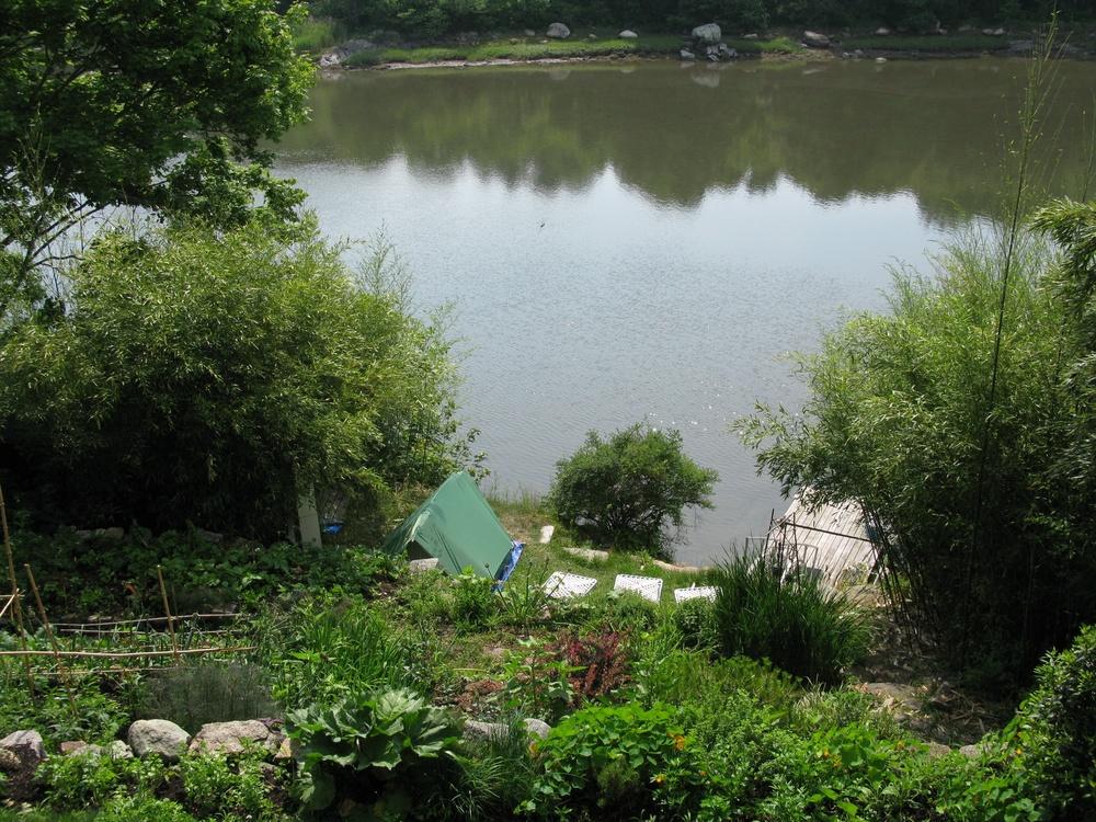 backyard_tent.jpg