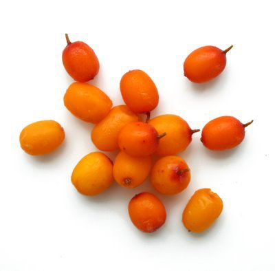 sea buckthorn-2