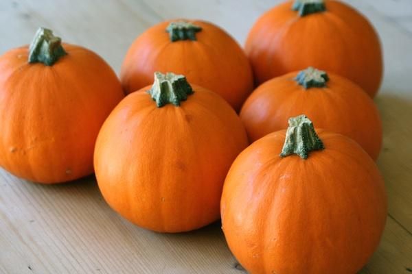 pumpkin-cream-pie-facial-beauty