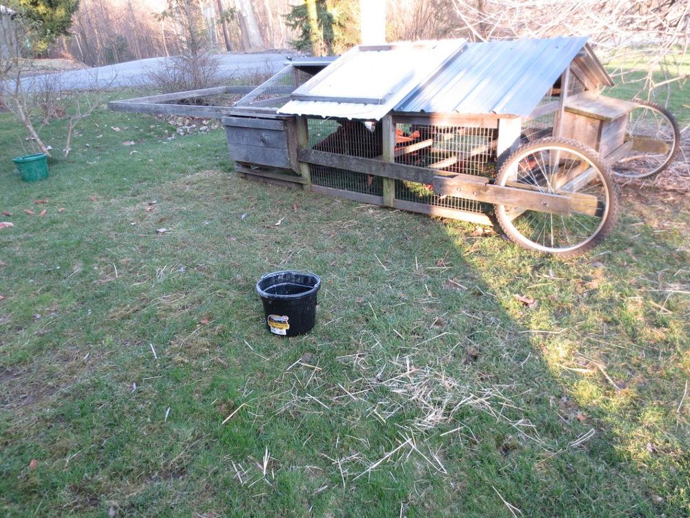 hen tractor:lawn fertiizer.jpg