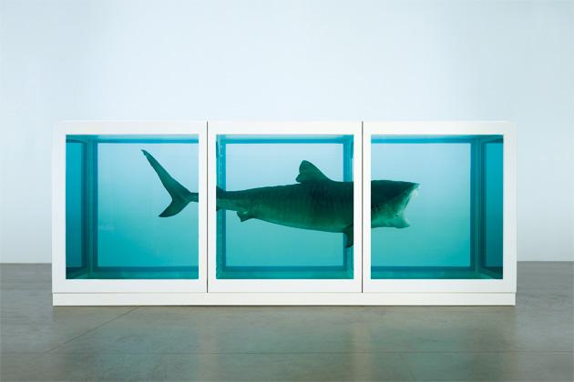 Hirst shark.jpg