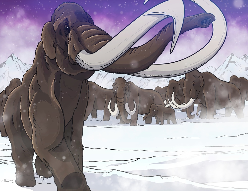 Mammoths!2.jpg