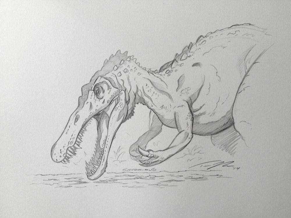 Fishing Suchomimus.