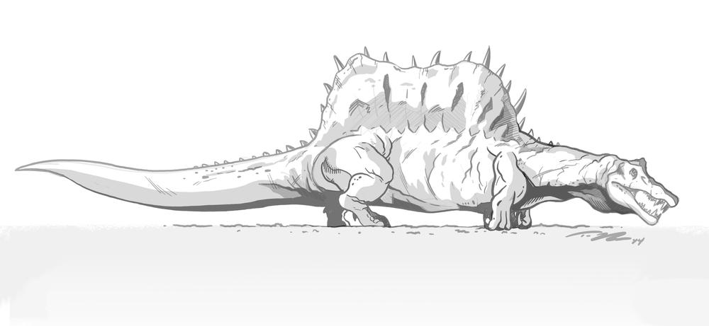 tedrechlinspinosaurus2