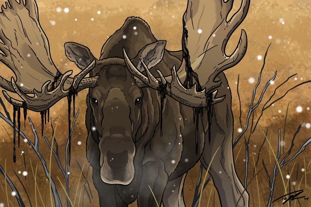 """The Bull"" - Moose"