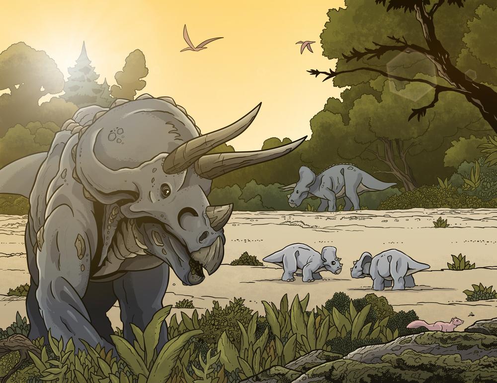 """Trike"" - Triceratops"