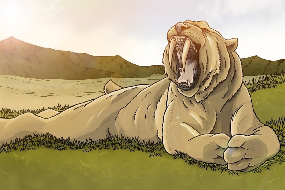 """Big Yawn"" - Smilodon"