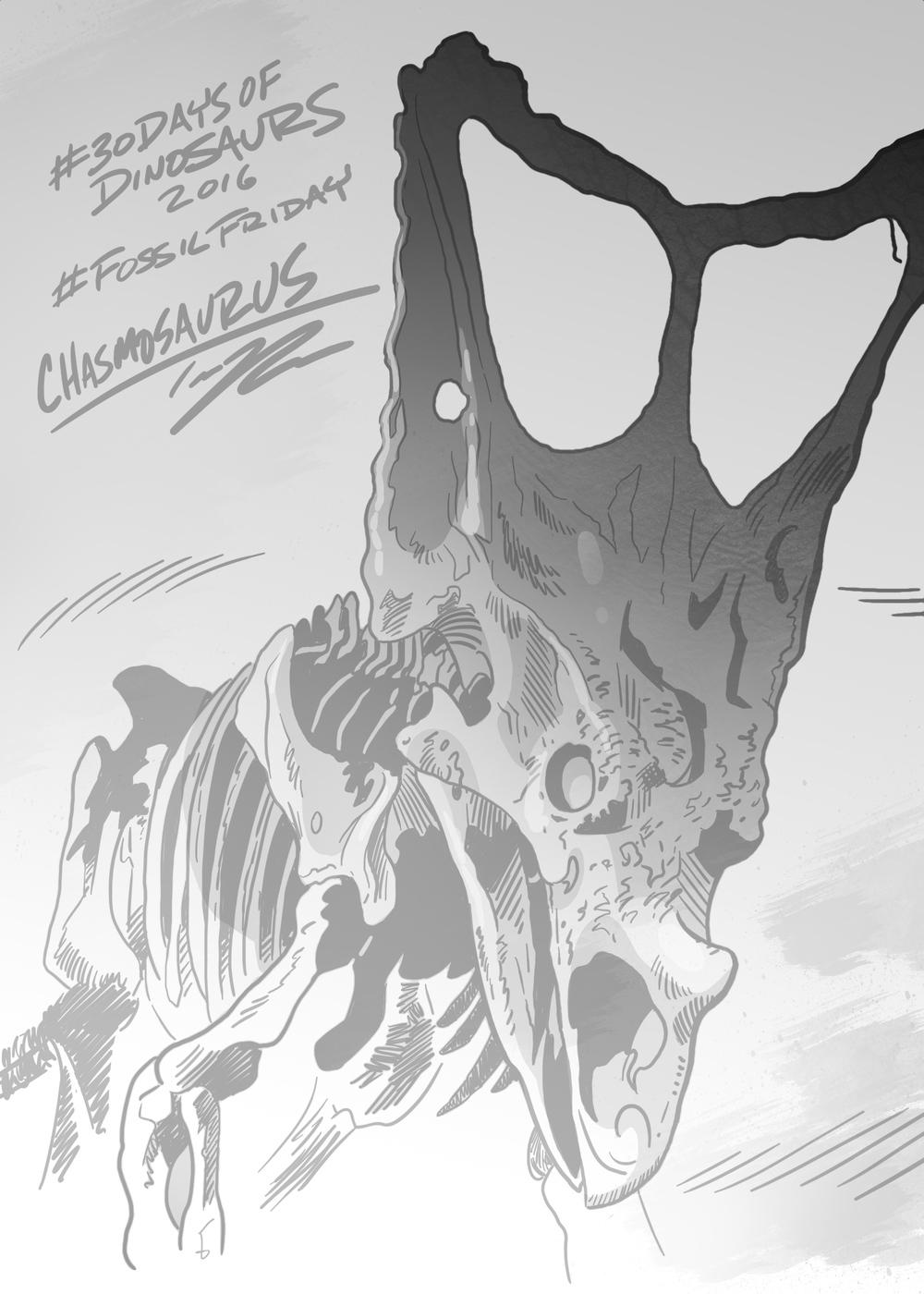 ChasmosaurustedRechlin