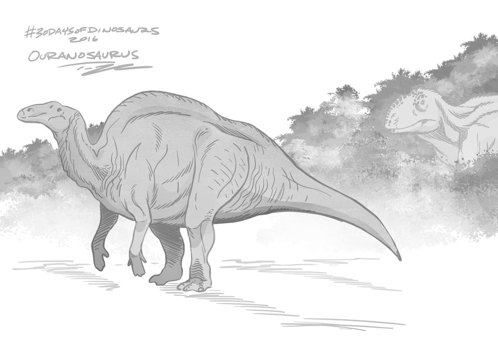 OuranosaurusTedRechlin