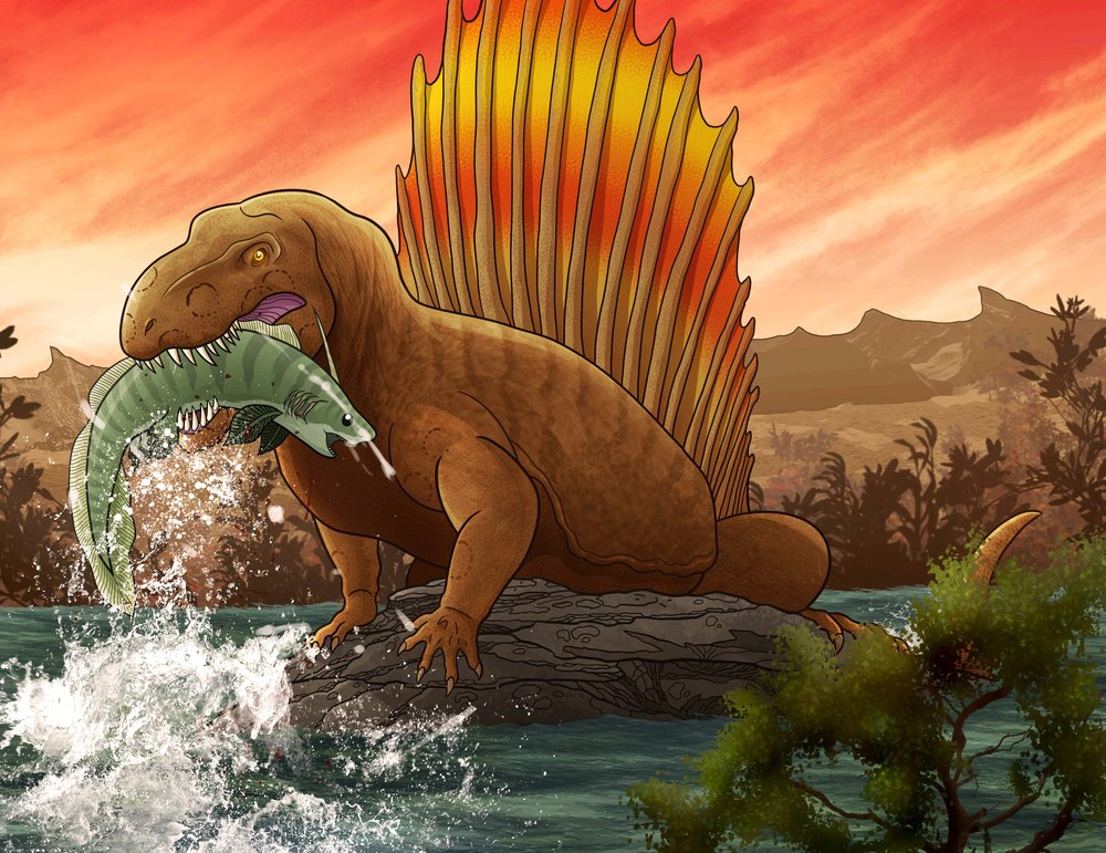 Dimetrodon - The Sharker