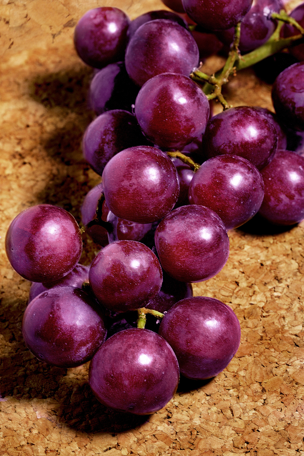 PurpleGrapes01.jpg