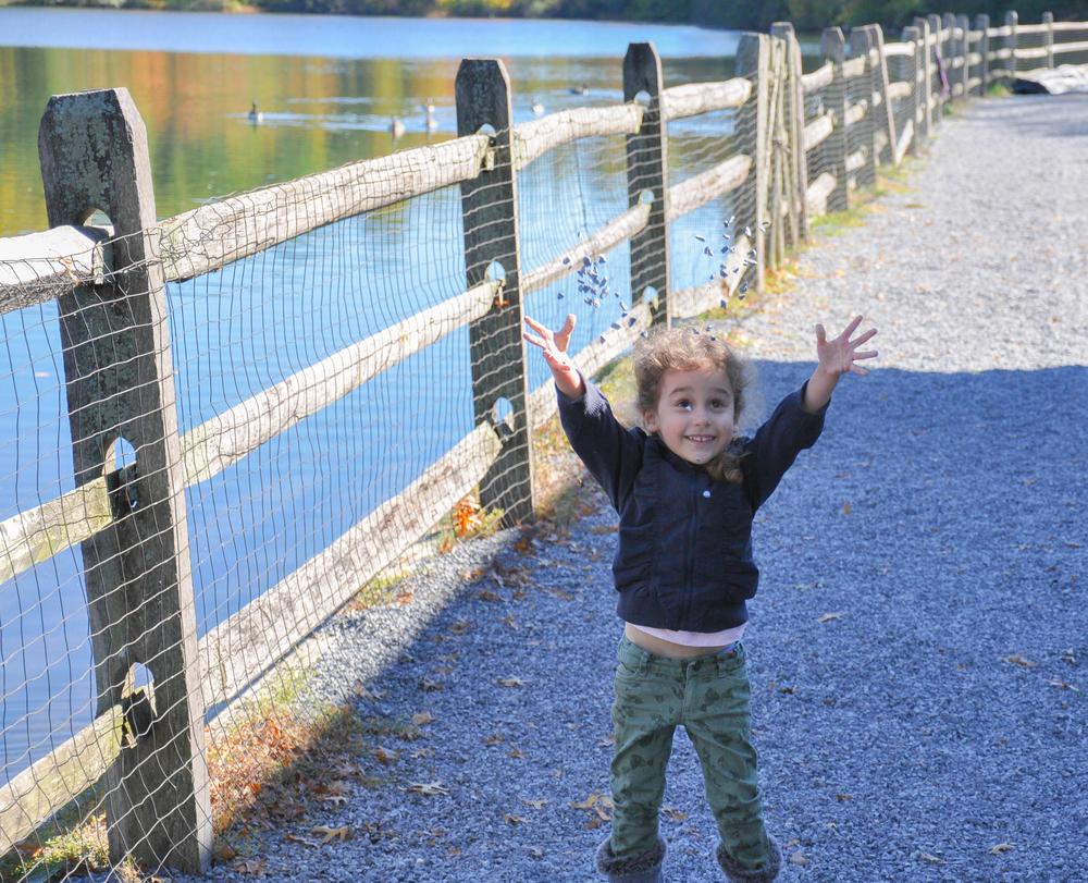 Ella Hands Up_Rocks.jpg