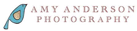 AMY ANDERSON PHOTOGRAPHY