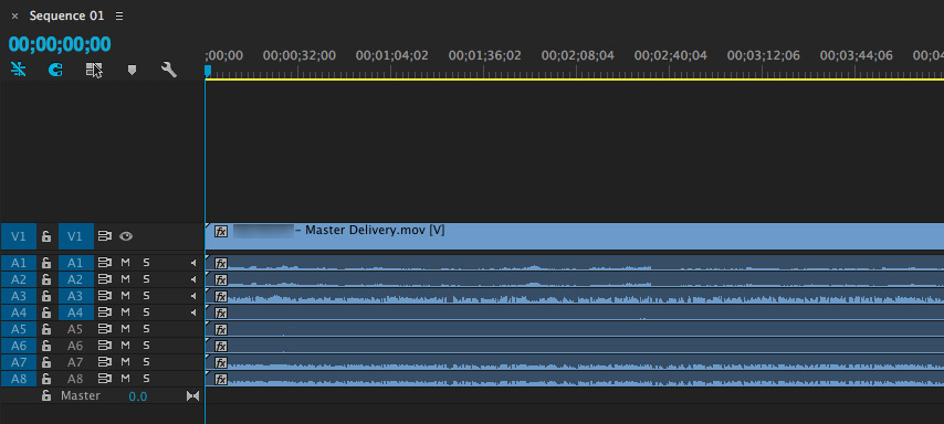 Dropping the file into a track-based editor (such as Premiere Pro) shows all our tracks came through nicely, and in the order we set them up.