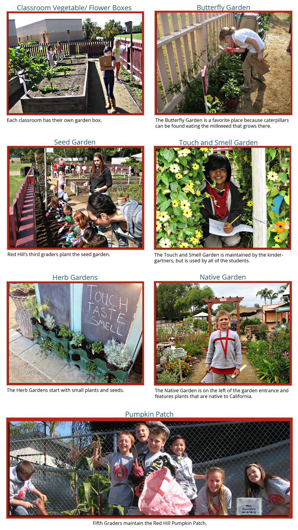 Specialty Gardens 18x32corrected.jpg
