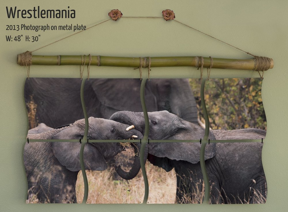 "Wrestlemania.  Photographic mural by Terrence Robertson-Fall of young elephants wrestling in Tanzania, Africa.  48""x30"""