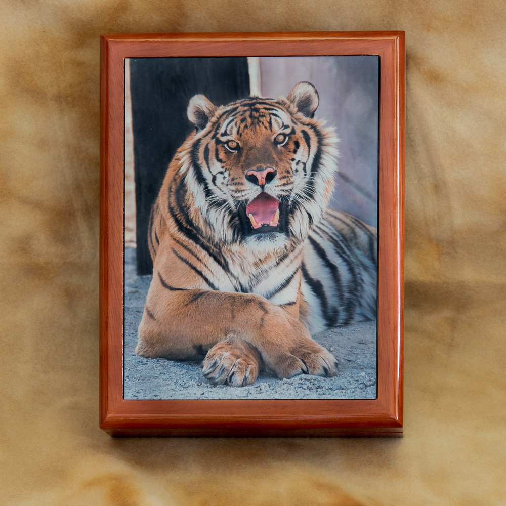Keepsake_box_cultured_tiger_front_by_Terrence_Robertson-Fall-2.jpg
