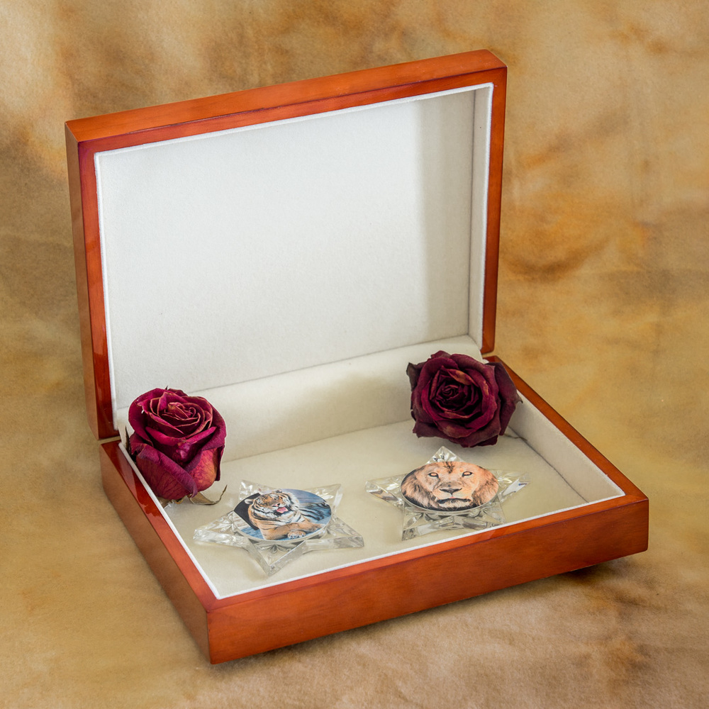 Keepsake_box_mementos_open_by_Terrence_Robertson-Fall-9.jpg
