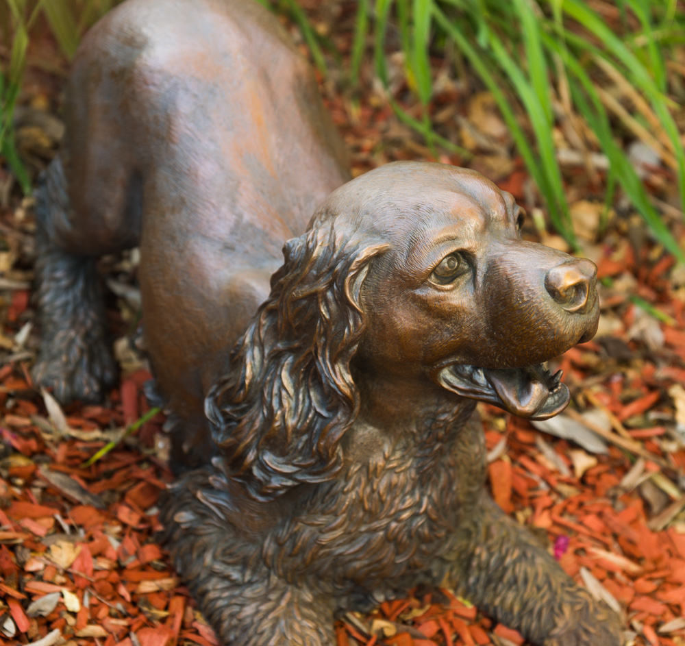 Play Bow bronze sculpture by Terrence Robertson-Fall -5960.jpg