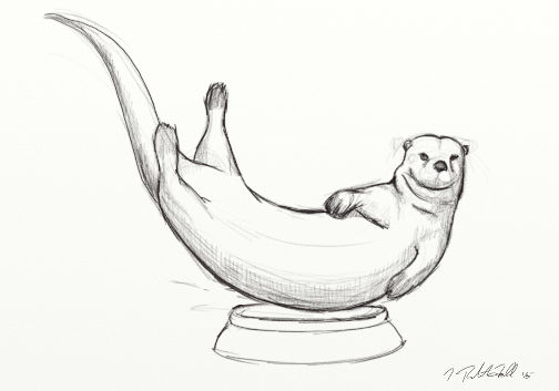 Otter swimming concept drawing