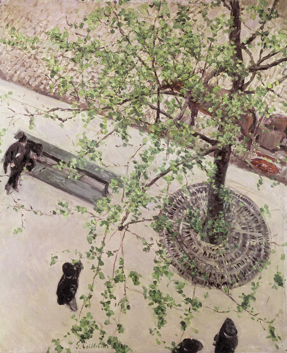 The Boulevard seen from above , 1880, olieverf op doek, privécollectie © Caillebotte Committee, Parijs