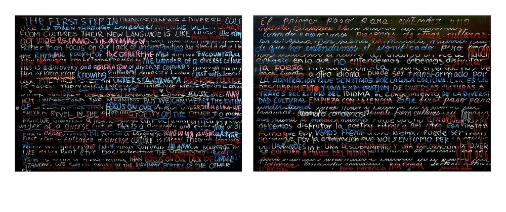 """Participatory Installation:  Reflections On Diversity    ; blackboard paint, chalk, pastels, pencil on birch; diptych: H48""""xW144""""; 2016 (Collection of S. Fitzgerald Haney; San Jose, Costa Rica)"""