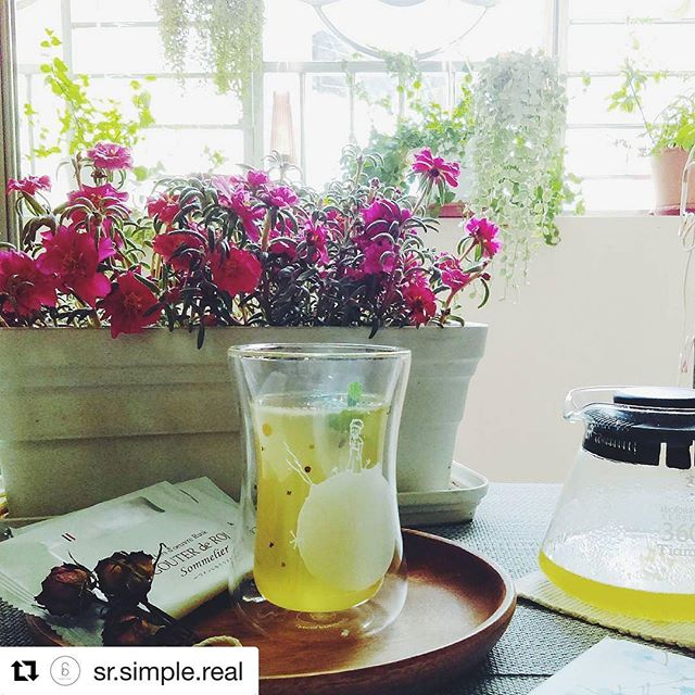 #Repost @sr.simple.real ・・・ Summer drink : Lemon honey tea, love love love Welcome to website: http://simple-real.com  #lepetitprince #mibuu #littleprince #cup #drink #doublewalled #glasscup #handmade #relax #afternoon #tea #coffee #hotdrink #flowers #tea #teatime