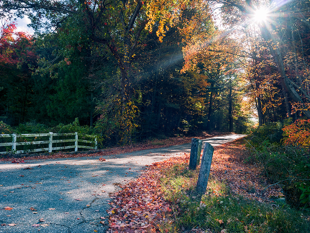 A country road in Connecticut