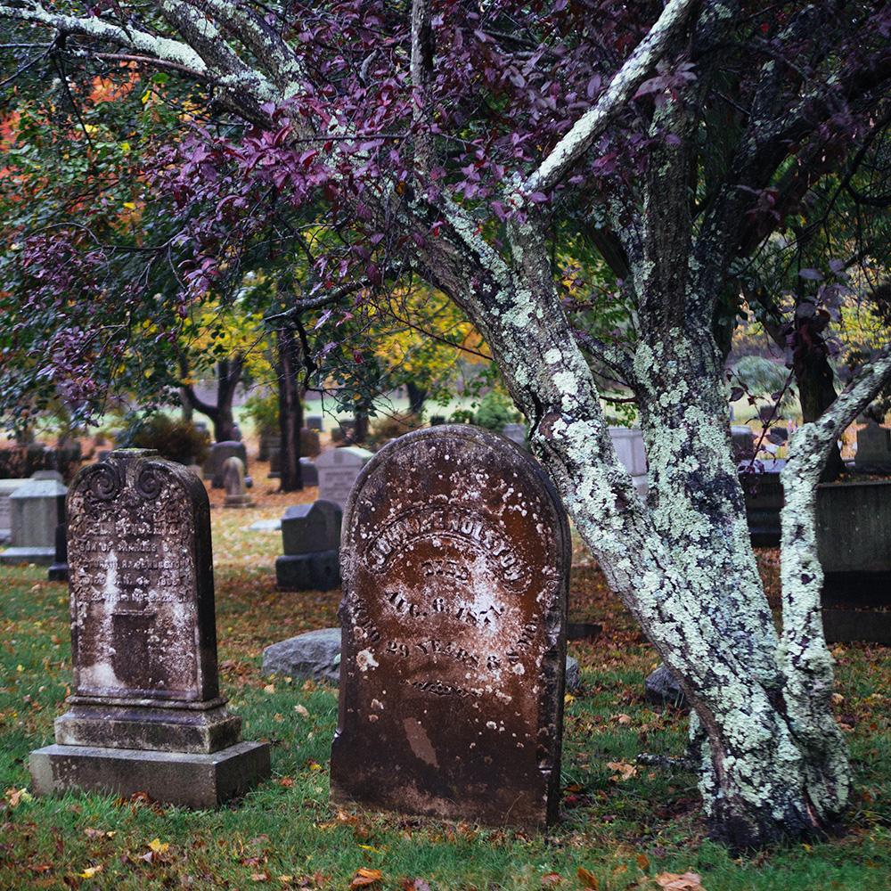 mystic_graveyard.jpg