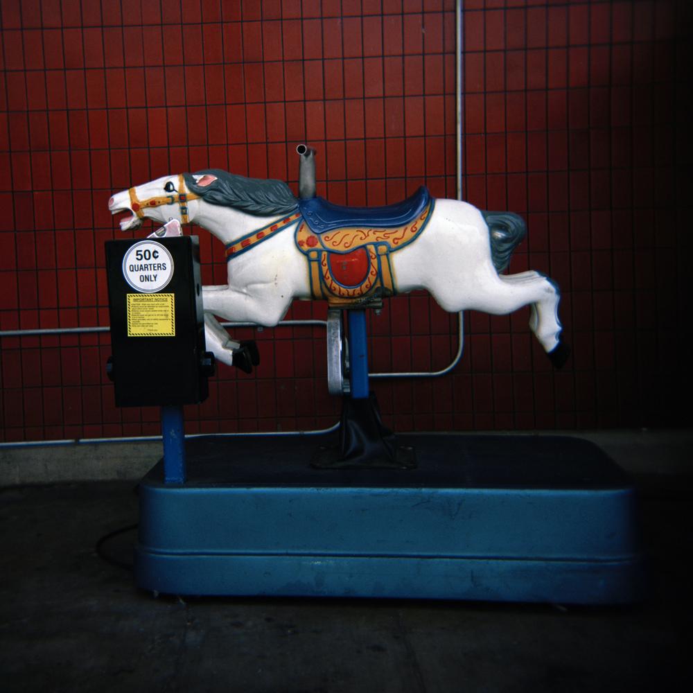 HorseCVSYessm.jpg
