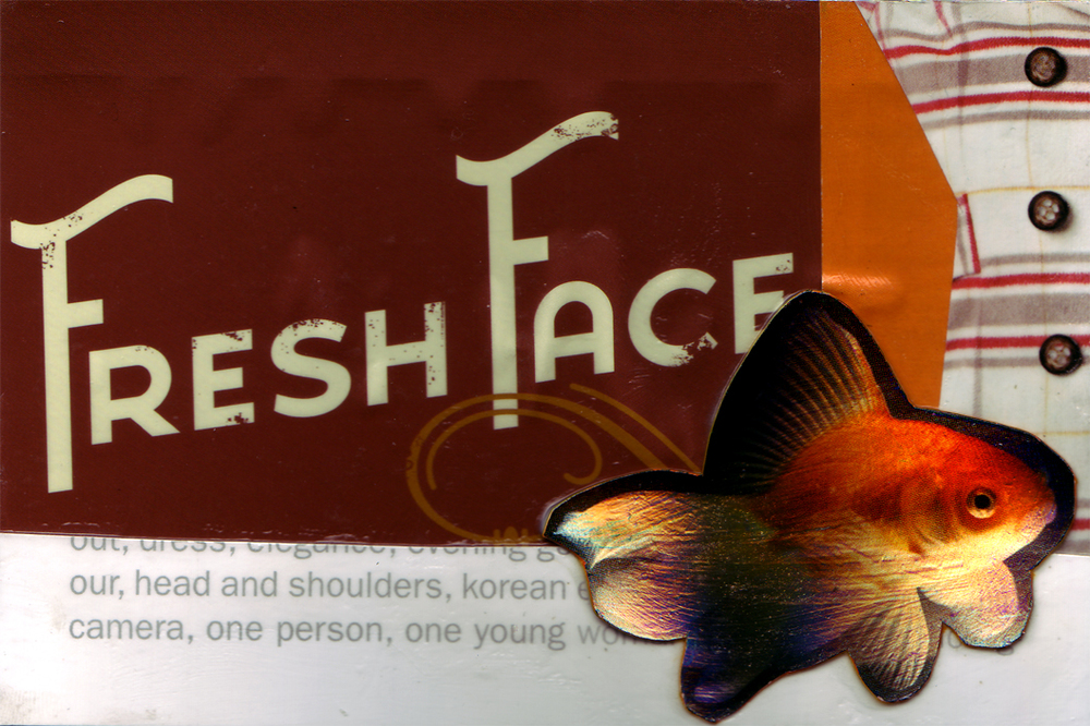 Postcards_Fish_i_web.jpg