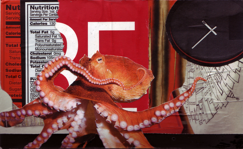 Postcards_Octopus_web.jpg