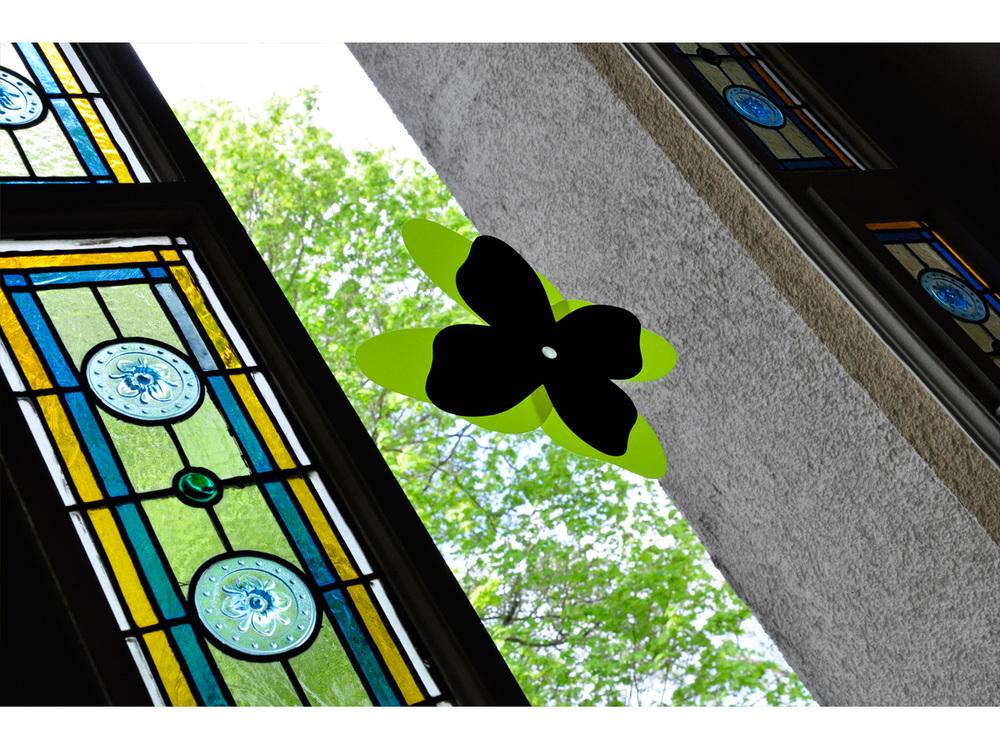 Freydenberg_Trans_Flower_Butterfly_35.jpg