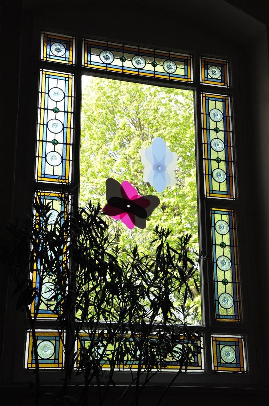 Freydenberg_Trans_Flower_Butterfly_32.jpg