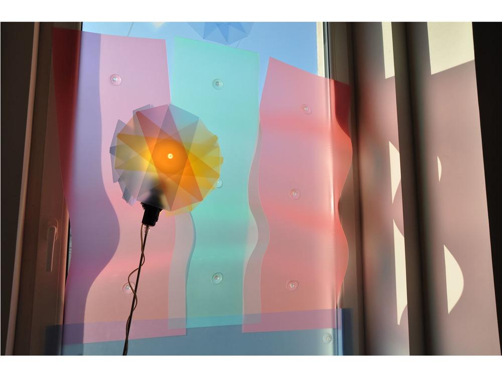 Freydenberg_Trans_Flower_61.jpg